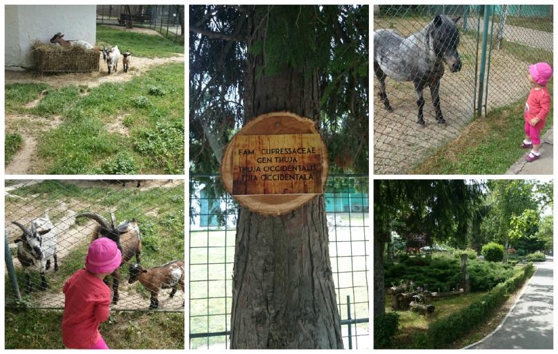 zoo tgv