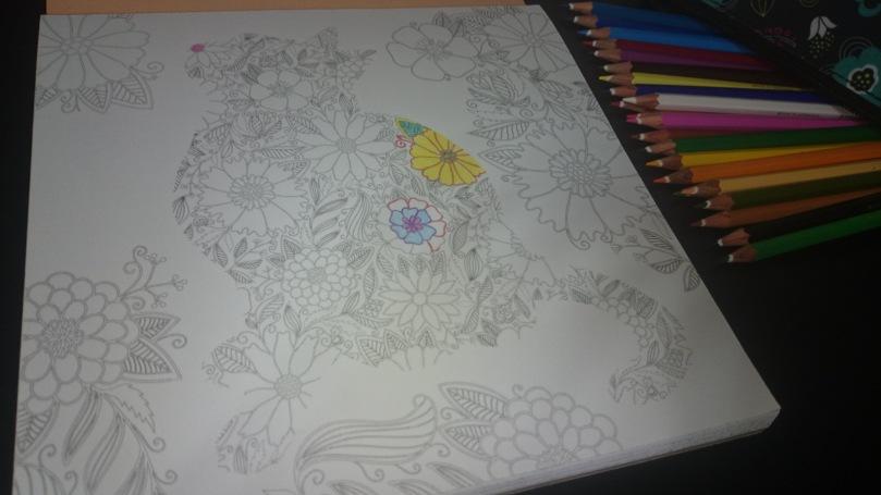 colorat (2)