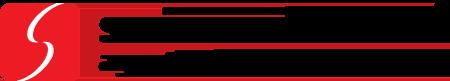 logo_swiss_solutions_RO