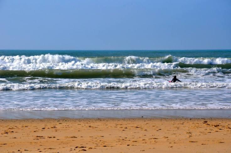 adriana surf
