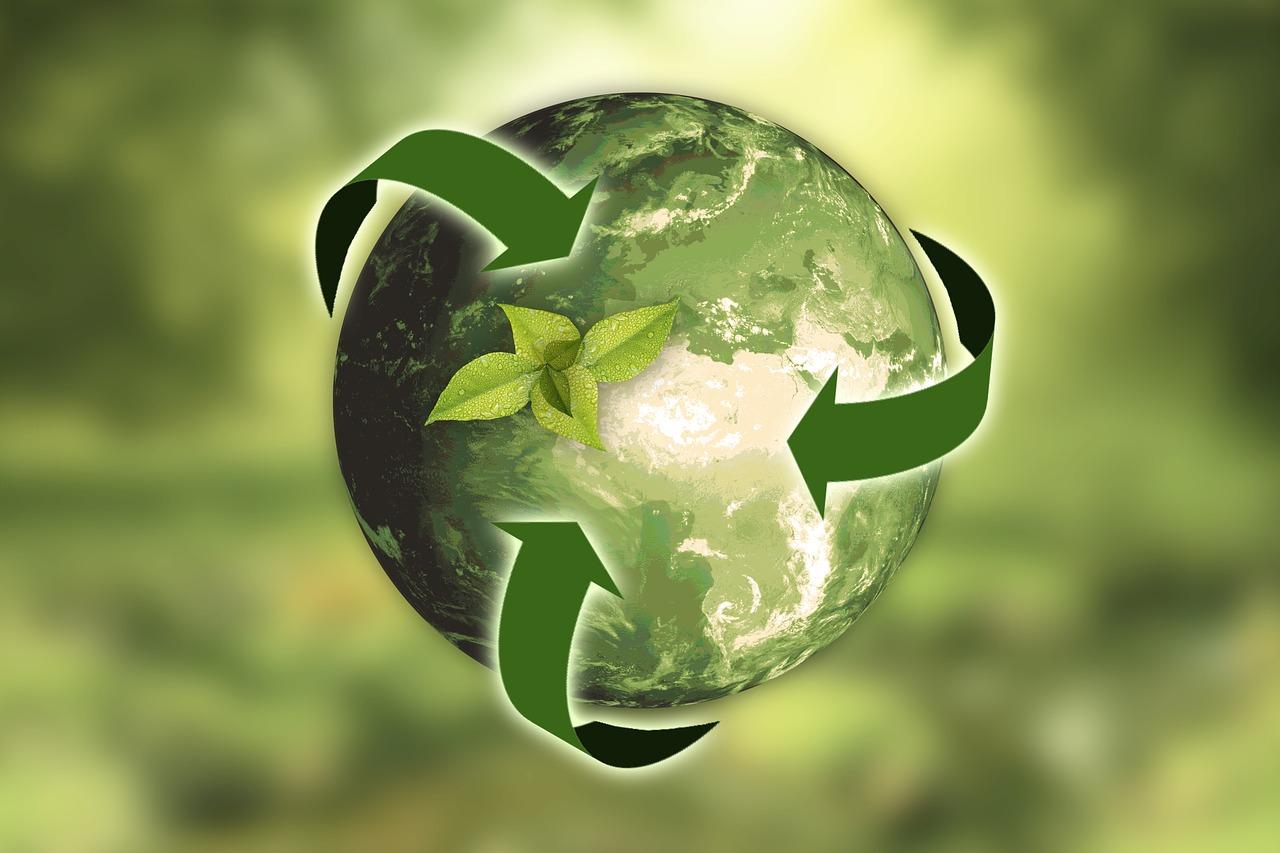 Redu Refolosește Reciclează Pe înțelesul Copiilor