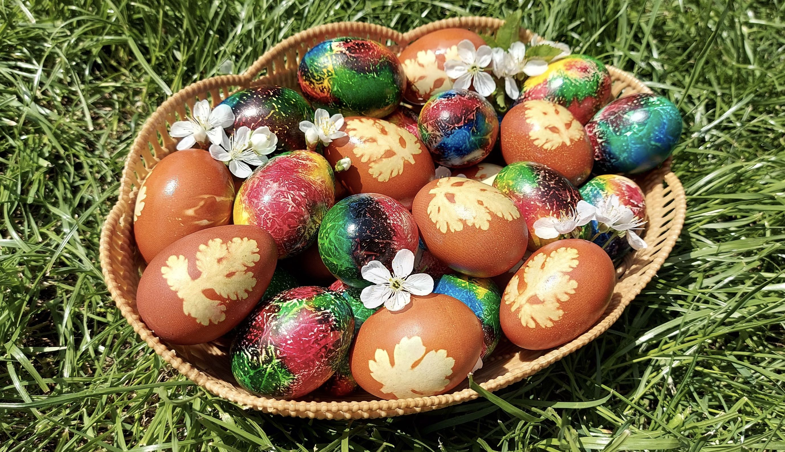 Cum să faci ouă multicolore, de Paște